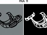 FNA 11