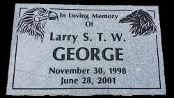 GEORGE-Larry