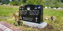 Double Ebony Black Serp-Top Polished Granite Upright Headstone