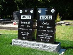 siegel-plot-002